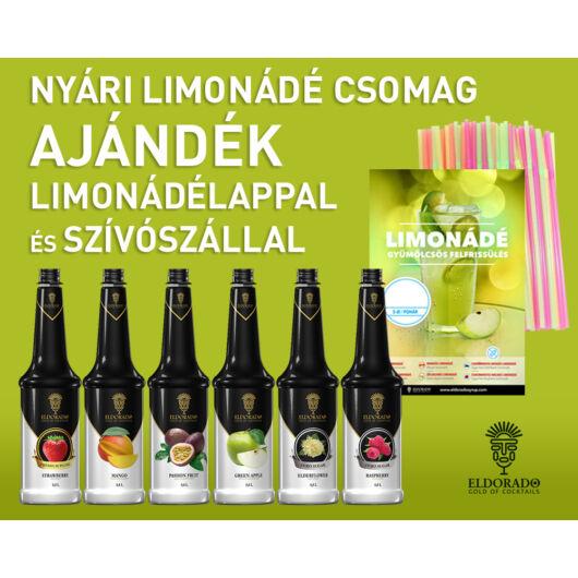 Nyári limonádé csomag ajándék limonádélappal és szívószállal - zöldalmás design al