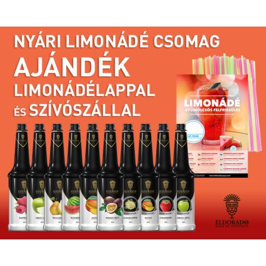 Nyári limonádé csomag ajándék limonádélappal és szívószállal - görögdinnyés design al
